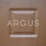 Входная дверь - АРГУС «ДА-13»