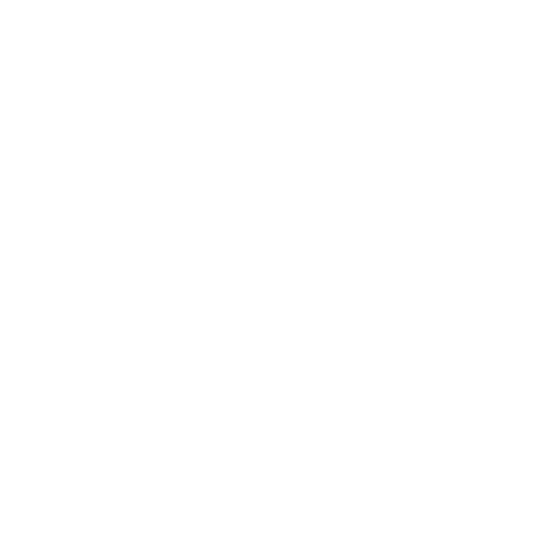 Входная дверь - Бульдорс STANDART 90 (МР Черный шелк 9К-4/ Ларче белый 9SD-2 )